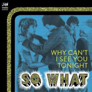 "So What - Why Can't I See You Tonight 7"" (Just Add Water)"