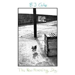BJ Cole - The New Hovering Dog lp (BJ Cole)