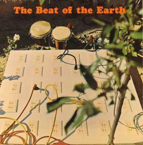 Beat of the Earth - This Record is an Artistic Statement (Radich