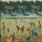 Cakekitchen - Kangaroos In My Top Paddock lp (Violet Times)