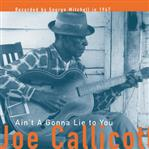 Joe Callicott - Ain't Gonna Lie To You lp (Fat Possum)