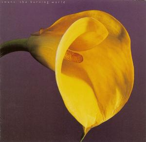 Swans - The Burning World lp (Universal)