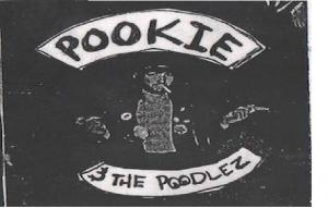 Pookie & the Poodlez - The Last Thing I Did as a Teenager CD