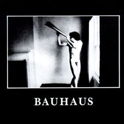Bauhaus - In The Flat Field lp pic disc