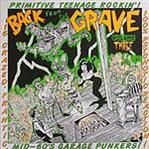 Back From The Grave Vol 3 cd (Crypt)