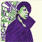 Big Freedia - Azz Everywhere lp (540 Records)