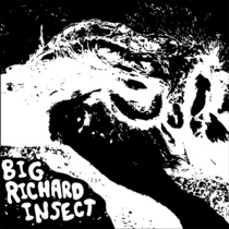 "Big Richard Insect - s/t 7"" (Major Crimes AUSTRALIA)"