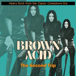 Brown Acid - The Second Trip cd (Riding Easy)