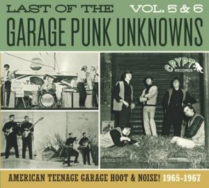 Last of the Garage Punk Unknowns - Vol. 5/6 cd (Crypt)