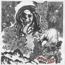 Destruction Unit - Void lp (Jolly Dream)