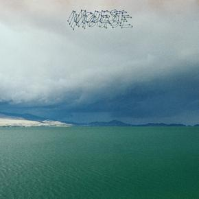 Modest Mouse - The Fruit That Ate Itself lp (Glacial Pace)