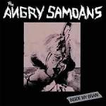 Angry Samoans - Inside My Brain RED WAX lp (Drastic Plastic)