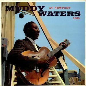 Muddy Waters - At Newport lp (DOL)