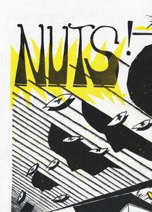 Nuts # 17 fanzine with CONEHEADS interview & more