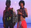 MGMT - Oracular Spectacular lp (Columbia Records)