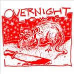 "Overnight Lows - Slit Wrist Rock N' Roll 7"" CLEAR VINYL (Goner)"