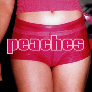 Peaches - The Teaches of Peaches lp (Kitty Yo)