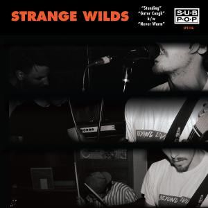 "Strange Wilds - Standing 7"" (Sub Pop)"