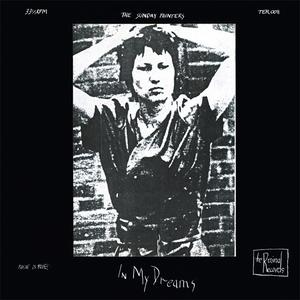 Sunday Painters - In My Dreams lp (What's Your Rupture)