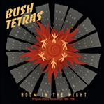 Bush Tetras - Boom In The Nigh lp (ROIR)