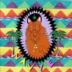 Wavves - King Of the Beach lp (Fat Possum)
