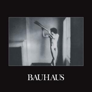 Bauhaus - In the Flat Field 40th Anniversary lp (4AD)
