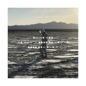 Spiritualized - And Nothing Hurt lp [Fat Possum]
