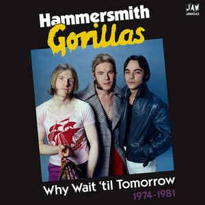 Hammersmith Gorillas - Why Wait Til Tomorrow lp [Just Add Water]