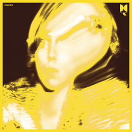 Ty Segall - Twins lp (Drag City)