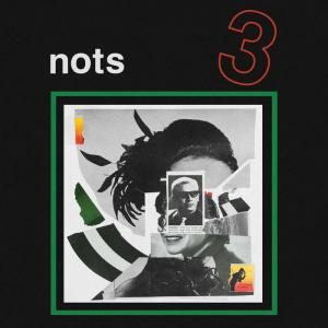 Nots - 3 - Goner Records