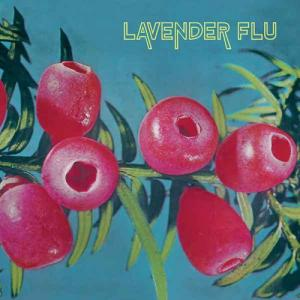 Lavender Flu - Mow the Glass lp (In the Red)