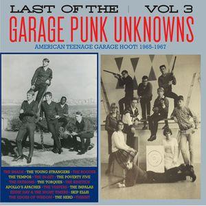 Last of the Garage Punk Unknowns - Vol 3 lp (Crypt)