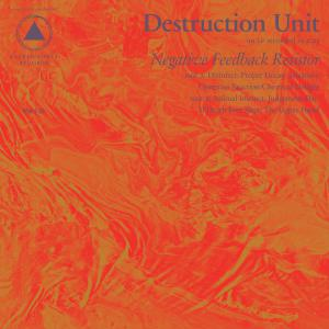 Destruction Unit - Negative Feedback Resistor lp (Sacred Bones)